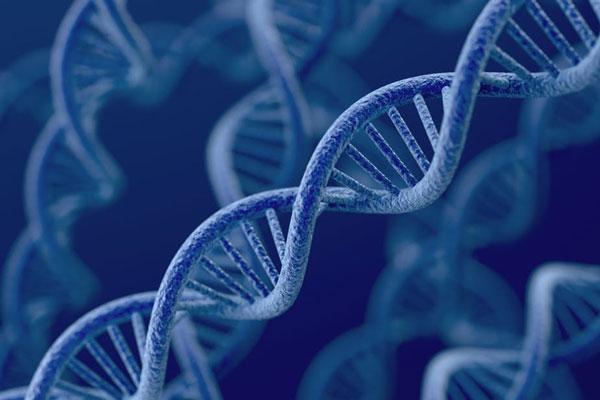 Di truyền học ảnh hưởng tới bệnh trầm cảm và tâm trạng 1