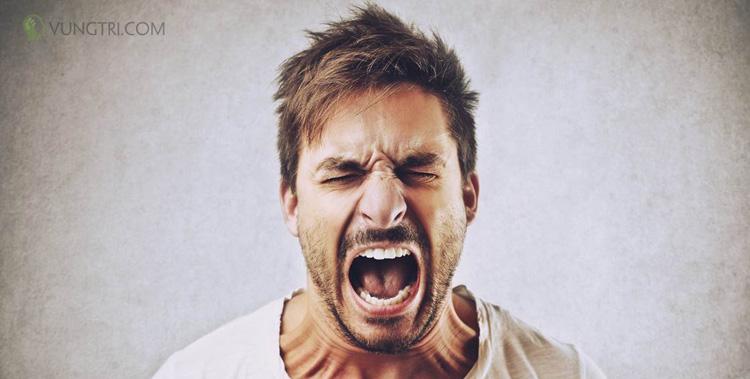 Giận dữ hoặc thù địch 1